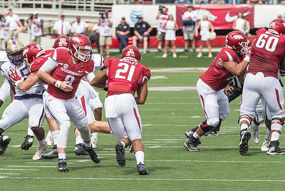 Arkansas Razorbacks quarterback Austin Allen (8) hands the ball to Arkansas Razorbacks running back Devwah Whaley (21) during a football game between the Arkansas Razorbacks and the Alcorn State Braves on Saturday, October 1, 2016.  (Alan Jamison, Nate Allen Sports Service)