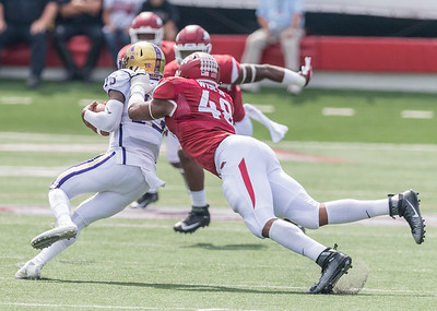 Arkansas Razorbacks defensive lineman Deatrich Wise Jr. (48) sacks Alcorn State Braves quarterback Noah Johnson (13) during a football game between the Arkansas Razorbacks and the Alcorn State Braves on Saturday, October 1, 2016.  (Alan Jamison, Nate Allen Sports Service)