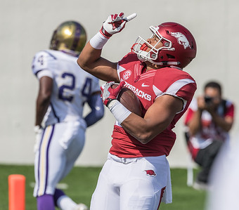Devwah Whaley celebrates a rushing touchdown during a football game between the Arkansas Razorbacks and the Alcorn State Braves on Saturday, October 1, 2016.  (Alan Jamison, Nate Allen Sports Service)