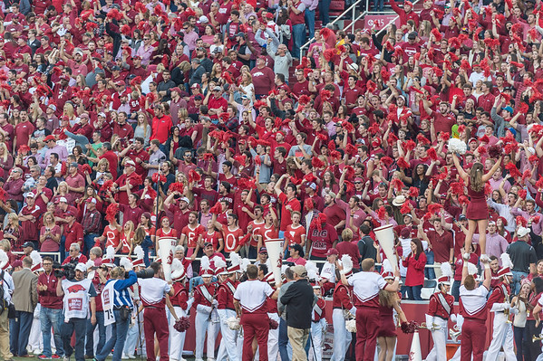 Fans during a football game between Arkansas and Alabama on Saturday, October 8, 2016.  (Alan Jamison, Nate Allen Sports Service)