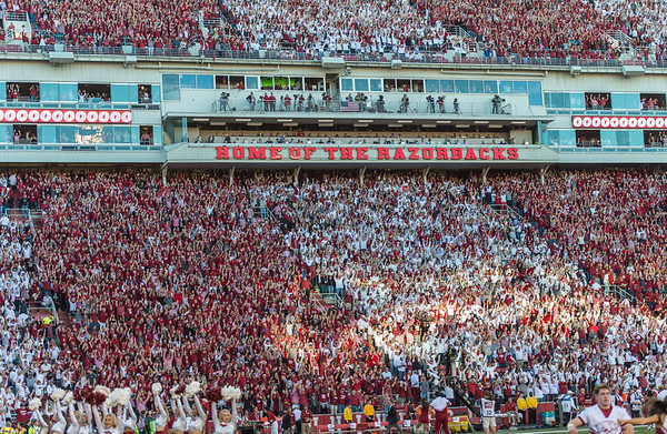 Fans call the hogs during a football game between Arkansas and Alabama on Saturday, October 8, 2016.  (Alan Jamison, Nate Allen Sports Service)