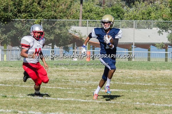 2016 Franklin Panthers JV Football vs Van Nuys Wolves