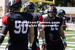 NCAAFOOTBALL:  OCT 01 Stetson at Davidson