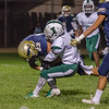2018 Franklin Panthers vs Inglewood Sentinals football photos