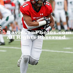 NCAAFOOTBALL:  OCT 27 Stetson at Davidson