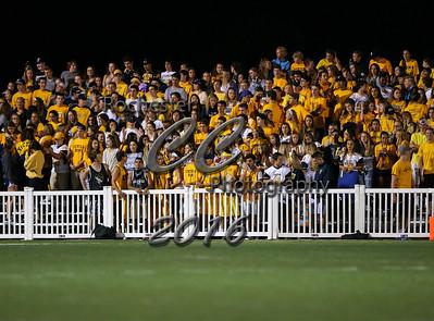 Fans, 0781