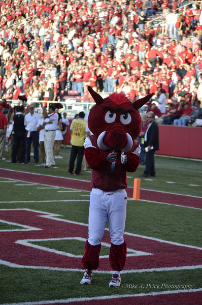 Arkansas vs Rutgers 2012