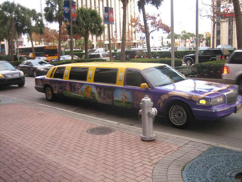 Custom airbrushed limo. Sure would like to see the inside of that thing