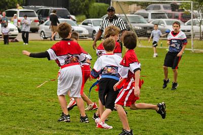 Albini Cardinals vs Patriots Apr 25, 2009