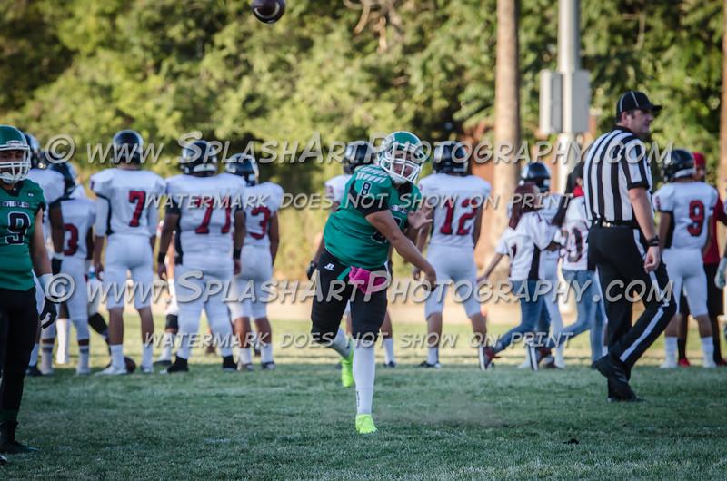 2015 Eagle Rock Football vs Arleta Mustangs