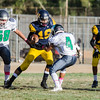 2016 Eagle Rock JV Football vs Wilson Mules