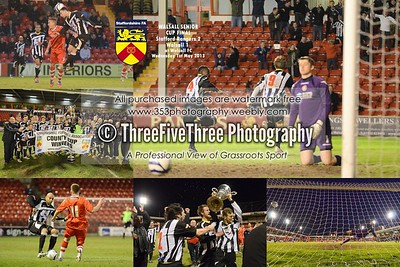 Walsall_Senior_Cup_2013
