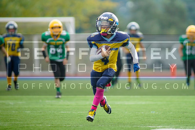 10/17/15- Richmond Gold vs Lake City Green- Peewee