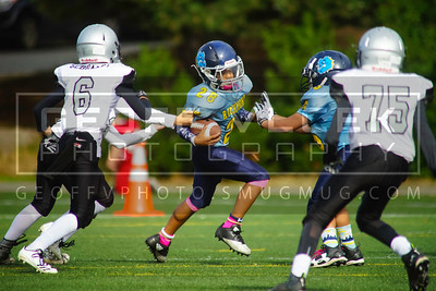 9/30/17- Richmond Bulldogs vs Ballard Knights- Juniors