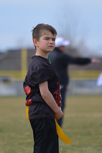 Falcons vs Browns 3-8-2014 2
