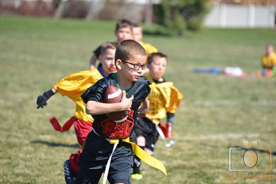Falcons vs Steelers 3-22-2014 5