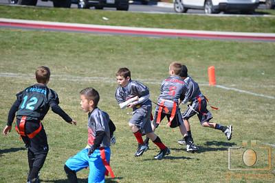 Patriots vs Panthers 3-22-14 20