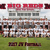 Milan JV Football 8x10 Team Photos 2017