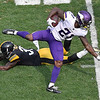 APTOPIX Vikings Steelers Football