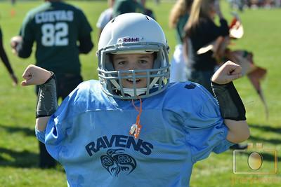 Ravens vs Vikings Photos 3