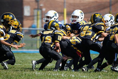 Panthers at Bears-45