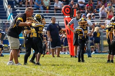 Panthers at Bears-20