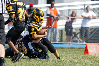 Panthers at Bears-35