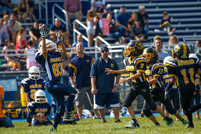 Panthers at Bears-16