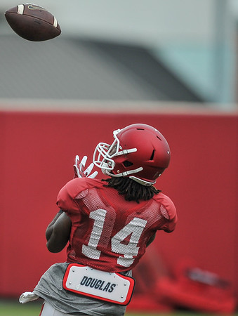 Eric Hawkins eyes an incoming pass at the Razorback football practice on Tuesday, August 18, 2015 at the Fred W. Smith Football Center in Fayetteville, Arkansas.   (Alan Jamison, Nate Allen Sports Service).