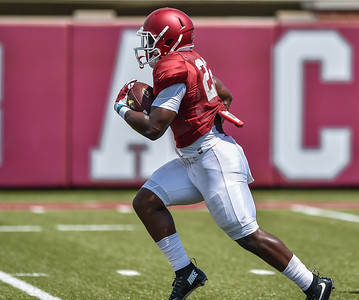 Running back Rawleigh Williams (22) at Razorback Football practice on Saturday, August 8, 2015 at the Fred W. Smith Football Center in Fayetteville, Arkansas.   (Alan Jamison, Nate Allen Sports Service).