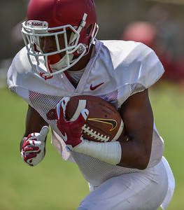 Defensive back Kevin Richardson (30) at Razorback Football practice on Saturday, August 8, 2015 at the Fred W. Smith Football Center in Fayetteville, Arkansas.   (Alan Jamison, Nate Allen Sports Service).