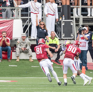 Arkansas Razorbacks wide receiver Drew Morgan (80) blocks to allow Arkansas Razorbacks wide receiver Cody Hollister (81) to score during a football game between the Arkansas Razorbacks and the Alcorn State Braves on Saturday, October 1, 2016.  (Alan Jamison, Nate Allen Sports Service)