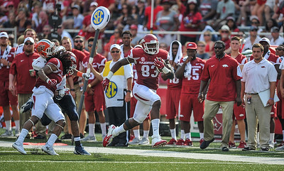 Arkansas Razorbacks tight end Jeremy Sprinkle (83) takes off during a football game between the Arkansas Razorbacks and the UTEP Miners on Saturday, September 5, 2015 at the  Donald W. Reynolds Razorback Stadium in Fayetteville, Arkansas.  Arkansas won the game 48-13.  (Alan Jamison, Nate Allen Sports Service).