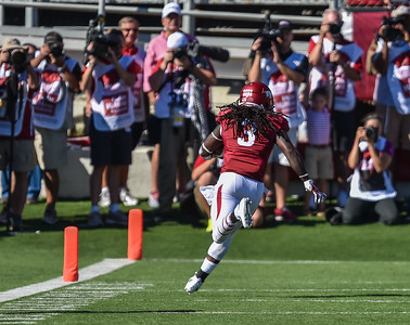 Alex Collins runs for a touchdown during a football game between the Arkansas Razorbacks and the Toledo Rockets on Saturday, 9/12/2015.  Toledo won 16-12.   (Alan Jamison, Nate Allen Sports Service)