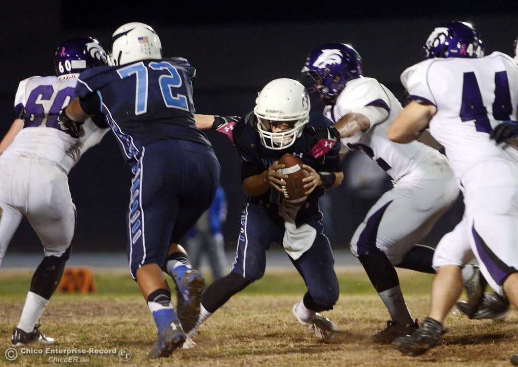 . Pleasant Valley High\'s #12 Trent Darms (center) is tackled against Shasta High in the first quarter of their football game at PVHS Asgard Yard Friday, October 18, 2013 in Chico, Calif.  (Jason Halley/Chico Enterprise-Record)