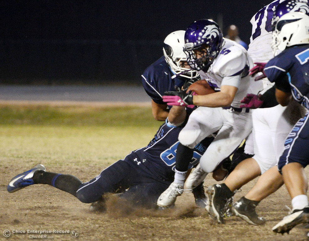 . Pleasant Valley High\'s #88 Zack Suttles (left) tackles against Shasta High\'s #5 Jake Callaway (center) in the second quarter of their football game at PVHS Asgard Yard Friday, October 18, 2013 in Chico, Calif.  (Jason Halley/Chico Enterprise-Record)