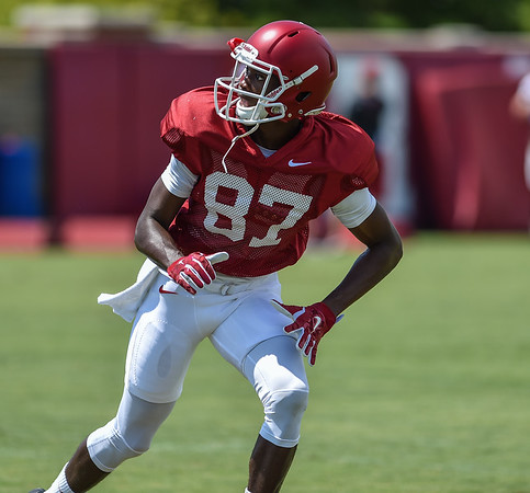 Wide receiver Dominique Reed (87) at Razorback Football practice on Saturday, August 8, 2015 at the Fred W. Smith Football Center in Fayetteville, Arkansas.   (Alan Jamison, Nate Allen Sports Service).