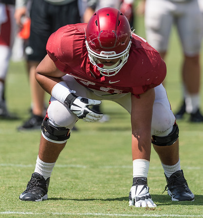 Colton Jackson (74) during the Razorback Football practice on Tuesday, August 11, 2015 at the Fred W. Smith Football Center in Fayetteville, Arkansas.   (Alan Jamison, Nate Allen Sports Service).
