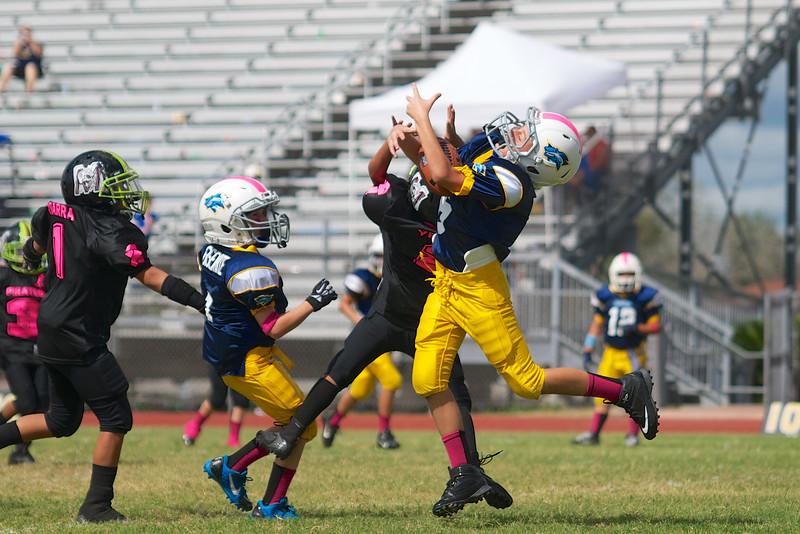 Touchdown catch!