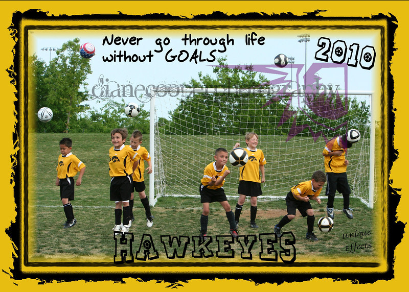 Hawkeye group action