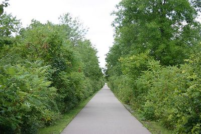 So, rather than biking from Ridgeway to Port Colborne, we biked from Ridgeway to Fort Erie, the section that remains open.  Much of the Trail in that stretch is hedged in by bushes.  The Rigeway to Port Colborne section (photos to be added when it re-opens) provides more open views, including many farm fields.