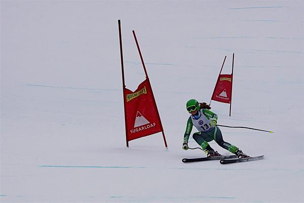 DownHill Jan 23 Races