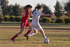 GIRLS SOCCER : 7 galleries with 1726 photos