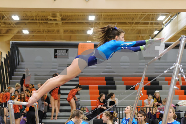 Senior Night Gymnastics at Lewis and Clark High School