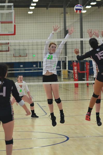 GW_Volleyball_16Asics_2015