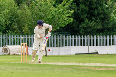 Kidderminster Cricket Club vs Knowle Dorridge Cricket Club
