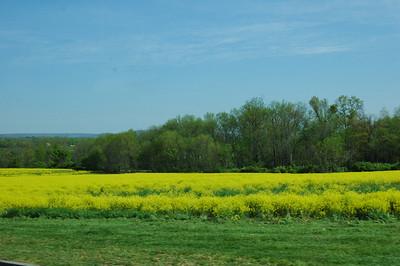 Gettysburg tour 2008 020