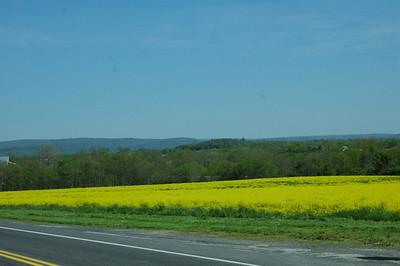 Gettysburg tour 2008 021
