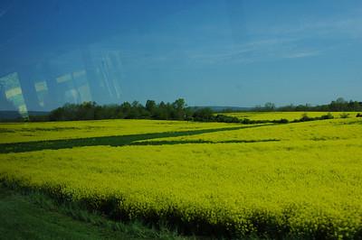 Gettysburg tour 2008 011
