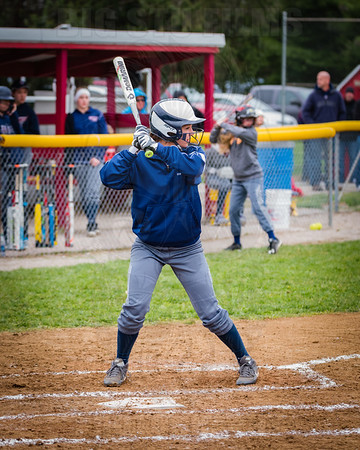 Gibault Lady Hawks Softball